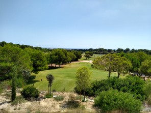 Lo Romero Golf Views